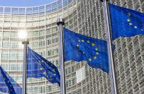 KE dyscyplinuje Polsk� ws. wdro�enia dyrektywy o zwrocie d�br kultury