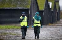 Nowa ptasia grypa w Europie. ONZ ostrzega