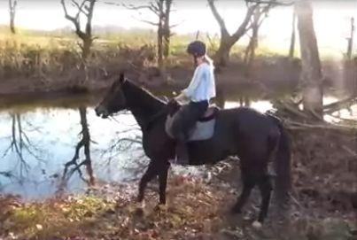 Jej koń bał się wody. Postanowiła...