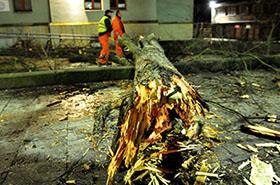 Ponad 400 interwencji strażaków przy usuwaniu skutków wichury