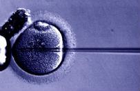 """WSA: MZ ma odpowiedzie� """"Naszemu Bocianowi"""" w sprawie skuteczno�ci in vitro"""