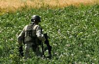 """""""B��kitna pustynia"""" - prawdziwe s�uchowisko o Afganistanie, kt�re wywo�uje ciarki na plecach"""