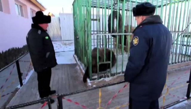 Resocjalizacja po rosyjsku. Jedyne takie więzienie