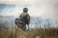 Kukiz'15, Polska Razem i Prawica Rzeczypospolitej: potrzeba wzmocnienia obrony terytorialnej