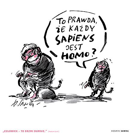 Sawka