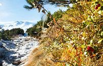 Uwaga: trudne warunki w Tatrach. Bez sprz�tu i wiedzy nie wychod� na wycieczki