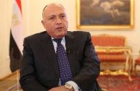 """Szef MSZ Egiptu: """"arabskie NATO"""" ma stabilizowa� region"""