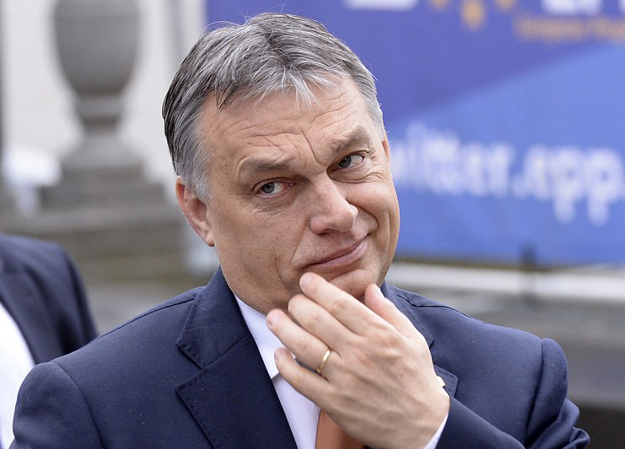 afp_orban_625.jpeg