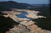 """Kalifornia walczy z pot�n� susz�. Koniec """"ery zielonych trawnik�w""""?"""