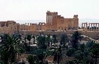 Z Palmiry ewakuowano ludno�� i kilkaset pos�g�w