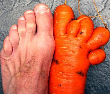 Warzywa i owoce, kt�re wygl�daj� jak...