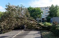 Burze przesz�y nad Polsk�. 1 osoba nie �yje, zerwane dachy, po�amane drzewa