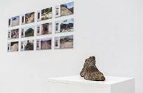 Refleksja nad przemijalno�ci� przyrody na wystawie w BWA w Katowicach