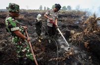 Po�ary las�w w Indonezji