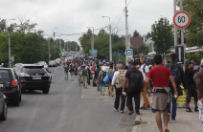 Na �l�sku odb�dzie si� wielki marsz przeciw imigrantom. Sw�j udzia� zapowiedzia�o ju� 27 tys. os�b