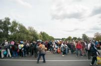 Czechy: policja i wojsko �wicz� ochron� granic przed migrantami