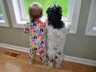 Dzieciaki i psiaki. I jak tu ich nie kocha�