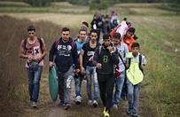 Grecja: Niemcy ode�l� ponad trzy tysi�ce migrant�w na Kret�