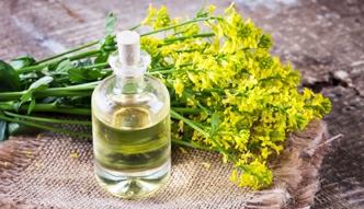 Zdrowotne właściwości oleju rzepakowego