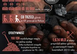 Polskie górnictwo w liczbach