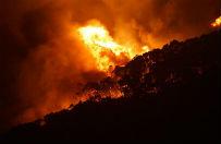 Australijczycy walcz� z po�arem buszu. Ogie� strawi� ju� ponad 100 dom�w