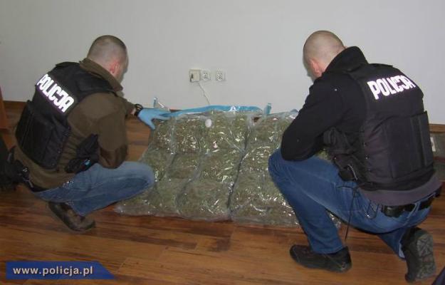 25 kg marihuany o warto�ci ponad miliona z�otych przej�te przez policj�