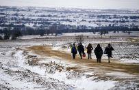 S�owenia i Chorwacja zamkn�y granice dla imigrant�w