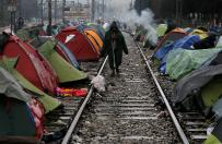 Szef MSZ W�och: 3,7 tys. migrant�w uratowano w ci�gu pi�ciu dni na morzu