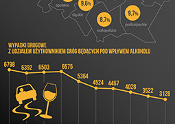Nietrzeźwi kierowcy: raport policji za rok 2015