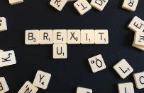 Wielka Brytania nie wyklucza wiz dla obywateli UE po Brexicie