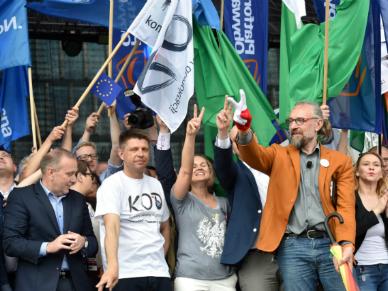 """Wystąpienia liderów opozycji na zakończenie marszu w Warszawie. """"Trzeba wygrać z podłą zmianą"""""""