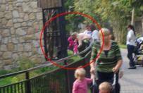 Gdy do zoo przychodzi ktoś, kto nie umie się zachować...