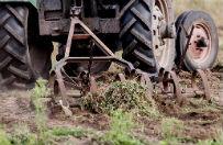 Pijany rolnik pr�bowa� zaora� asfalt traktorem, pijany wo�nica spa� w wozie na �rodku jezdni