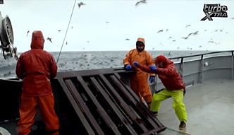 Ekstremalne połowy dorsza na Morzu Beringa [Na haczyku]