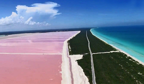 """""""Różowa laguna"""" w Meksyku okiem drona"""