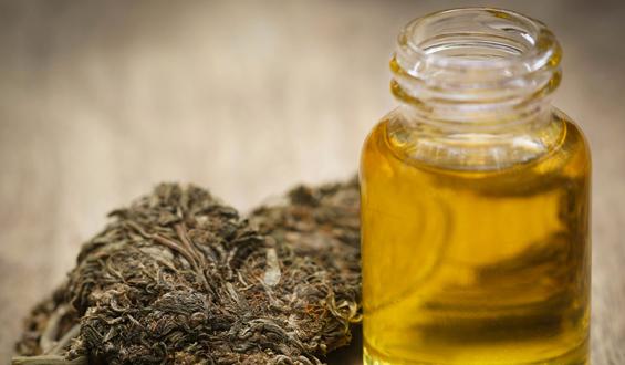 Zalety marihuany leczniczej. Na jakie schorzenia pomaga?