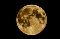Tej nocy zobaczymy superksiężyc. To największa pełnia od 1948 r.
