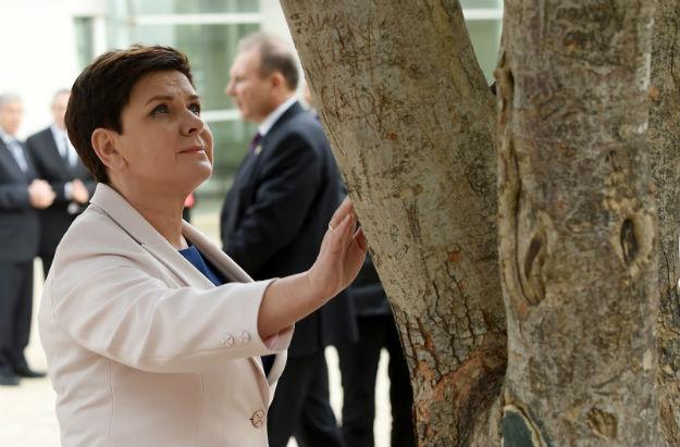 Premier Beata Szydło w Instytucie Yad Vashem, w Ogrodzie Sprawiedliwych Wśród Narodów Świata przy drzewie poświęconym Irenie Sendlerowej