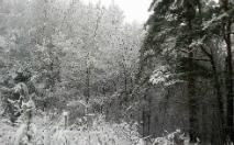 Pierwszy zimowy dzień okiem naszych internautów