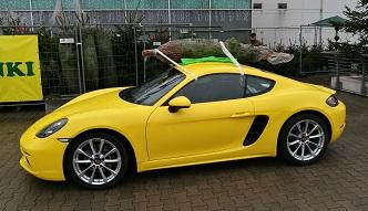 Jak w Porsche przewieźć choinkę? Poradnik