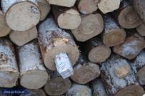 CBŚP i celnicy powstrzymali przemyt papierosów ukrytych w balach sosnowych