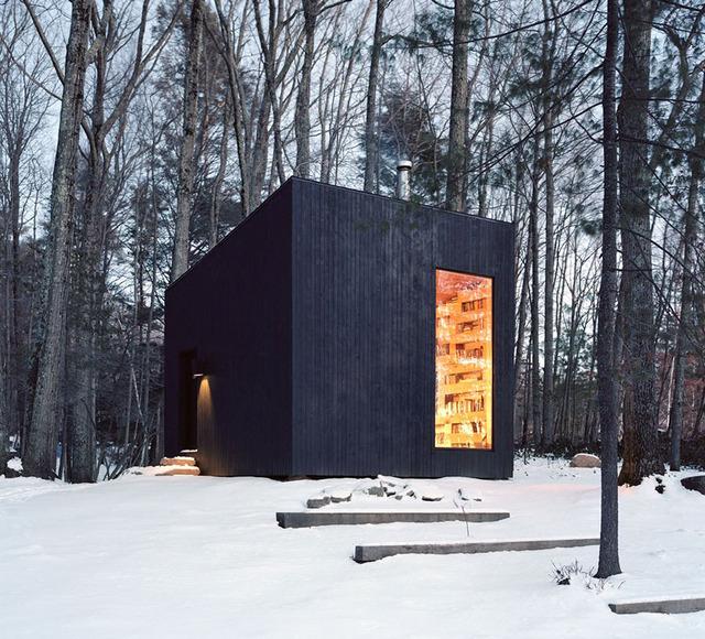 Biblioteka ukryta w lesie