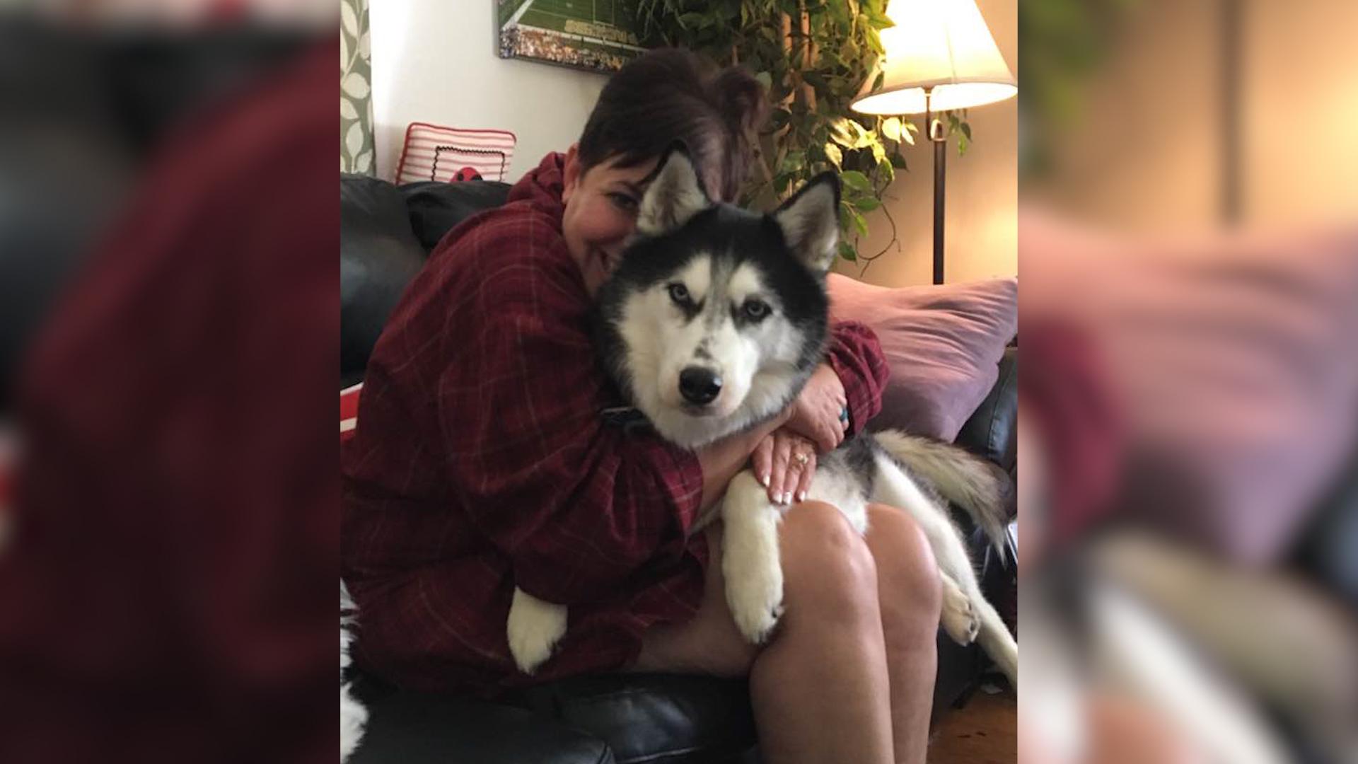 Pies uratował jej życie. Niezwykła historia