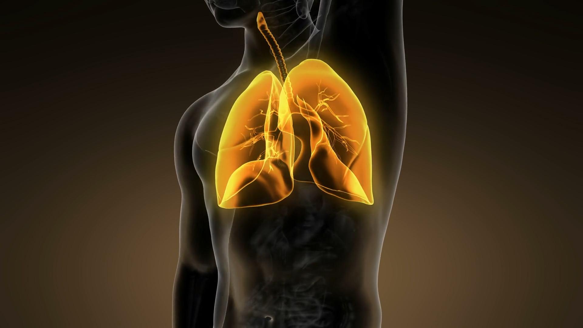 Jak oczyścić płuca w 72 h?