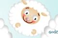 Plan lekcji: owieczki