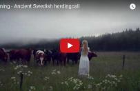 Nietypowe do�wiadczenie szwedzkiej artystki