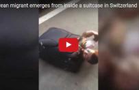 Uchod�ca ukry� si� w walizce, by dosta� si� do Szwajcarii