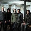 Ilu Polaków ściągnęło Nine Inch Nails