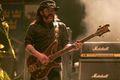 Lemmy zabierze Hommera Simpsona do piekła