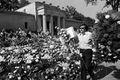 Kup grobowiec Elvisa Presleya